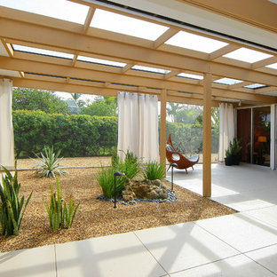 Moderner Patio in Tampa