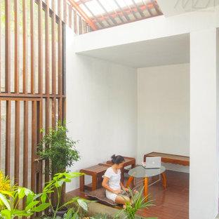 Ispirazione per un piccolo patio o portico minimalista in cortile con un giardino in vaso