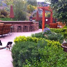 Patio by SP Gardens - Susanna Pagan Landscape Design