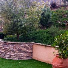 Mediterranean Patio by SP Gardens - Susanna Pagan Landscape Design