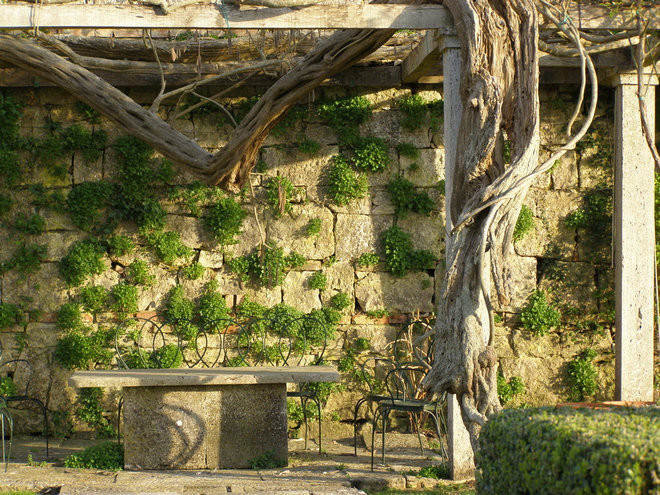 Mediterranean Patio by Grounds by Design - Fine Landscapes
