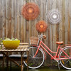My Houzz: Reflecting Personality in a Rented Townhouse