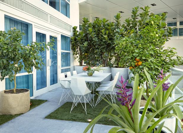 Contemporary Patio by J Design Group - Interior Designers Miami - Modern
