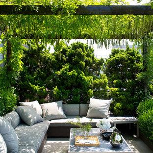 Ispirazione per un patio o portico minimalista di medie dimensioni con pavimentazioni in cemento e un tetto a sbalzo