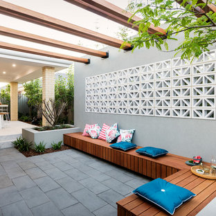 Large contemporary backyard patio in Perth with a container garden, a roof extension and concrete pavers.