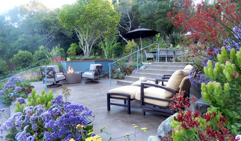 Mill Valley Hillside Garden