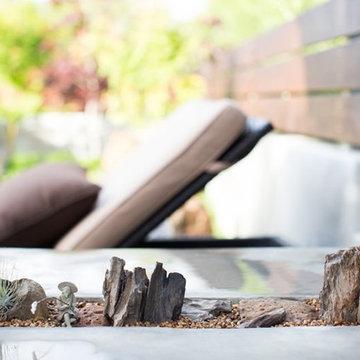 Miniature Garden Designs, San Diego