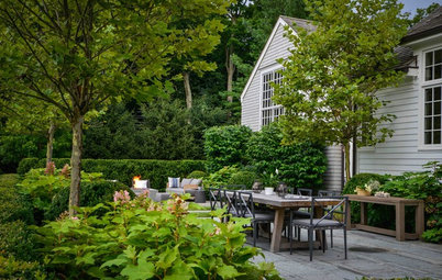 How to Maintain Your Garden to Ensure Its Long-Term Health