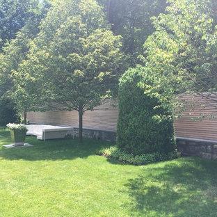Ispirazione per un ampio patio o portico moderno dietro casa con fontane e lastre di cemento