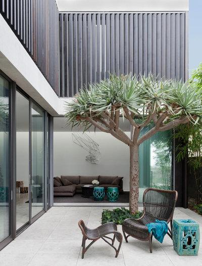 Moderne Terrasse et Patio Modern Patio