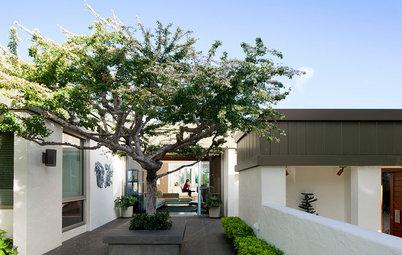 自然で心地よい涼しさを演出する、庭・屋上の暑さ対策