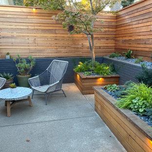 Foto di un piccolo patio o portico moderno davanti casa con lastre di cemento