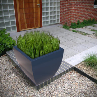 Example of a mid-sized trendy backyard patio container garden design in Toronto
