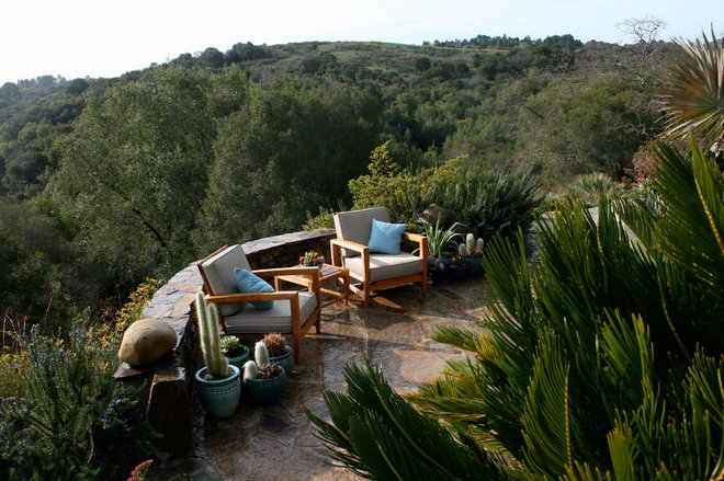 Eclectic Patio by Golden Gate Palms and Exotics