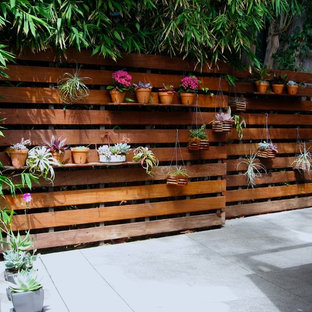 Patio - contemporary concrete patio idea in Los Angeles with no cover