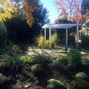 Foto de patio contemporáneo, de tamaño medio, en patio delantero, con jardín de macetas, granito descompuesto y pérgola