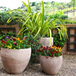 Foto de patio mediterráneo, sin cubierta, en patio trasero, con jardín de macetas y granito descompuesto