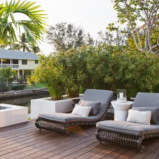 Foto di un patio o portico minimalista di medie dimensioni e dietro casa con un giardino in vaso, pedane e nessuna copertura
