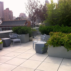 Contemporary Patio by Christian Duvernois Landscape/Gallery