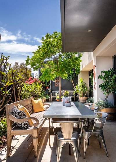 Contemporary Patio by Collected Interiors