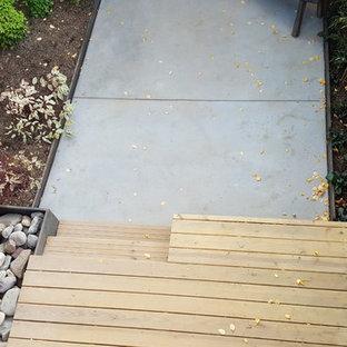 Foto på en mellanstor orientalisk uteplats på baksidan av huset, med en vertikal trädgård och betongplatta