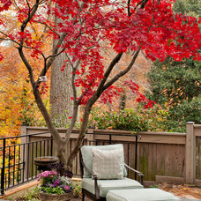 Traditional Patio by Tiger Lily Landscapes, LLC
