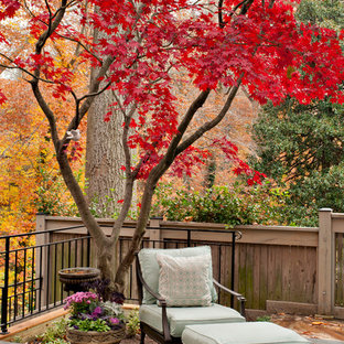 Inspiration for a mid-sized timeless backyard patio remodel in DC Metro with no cover