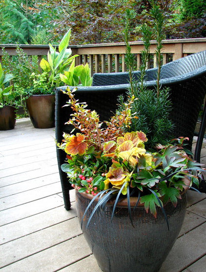 Traditional Patio by Le jardinet