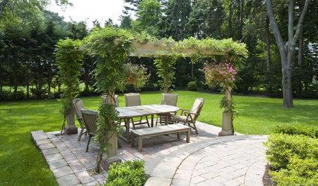 Просто фото: 16 пергол, которые украсят сад