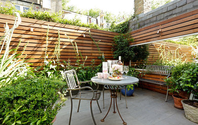 Stylish Ways to Create Privacy in your Garden