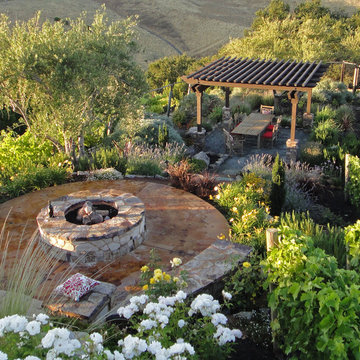 Outdoor living set in a vineyard with a pergola, fire pit, & landscape lighting