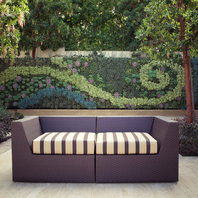 Inspiration for a contemporary courtyard patio vertical garden remodel in Los Angeles