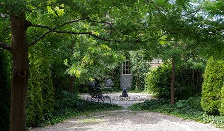 Backyard of the Week: Leafy Park-Like Retreat in Toronto