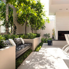 Modern Patio by Swell Homes