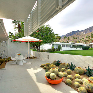Example of a mid-century modern concrete patio design in San Francisco with a roof extension