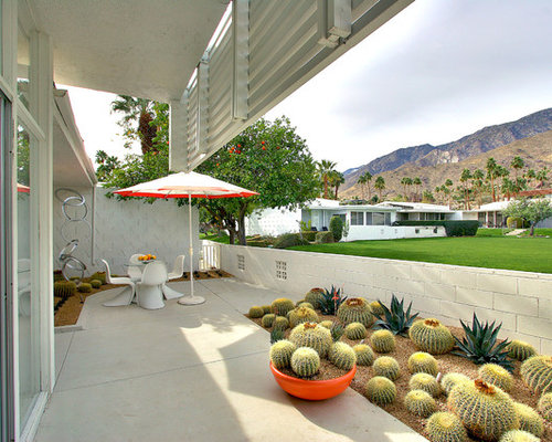 Cactus Garden Houzz