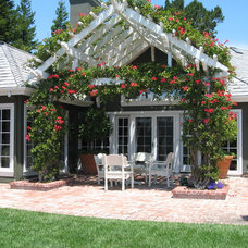 Traditional Patio by Waterman & Sun