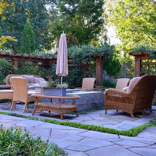 ワシントンD.C.の中サイズのトランジショナルスタイルのおしゃれな裏庭のテラス (天然石敷き、日よけなし) の写真