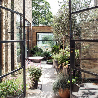 Inspiration for a contemporary courtyard patio in London with concrete paving and no cover.
