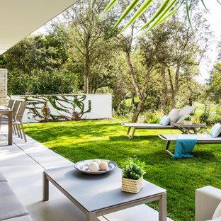 Modelo de patio contemporáneo, de tamaño medio, en patio trasero y anexo de casas