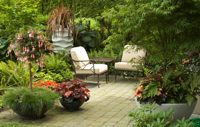 How to Get a Lush Look on Your Patio With Container Gardens
