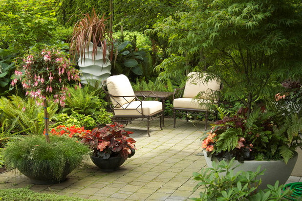 Traditional Patio by CYAN Horticulture