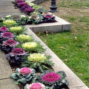 Foto de patio clásico, de tamaño medio, sin cubierta, en patio, con adoquines de piedra natural y jardín de macetas