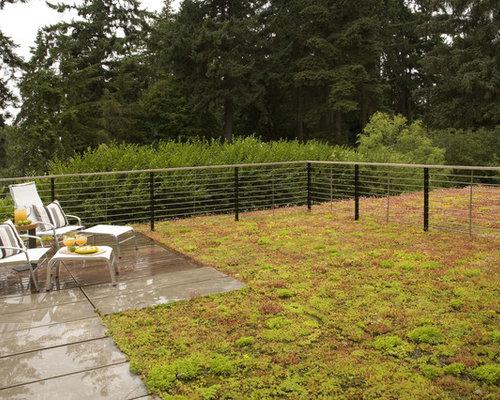 Dog Fence Houzz