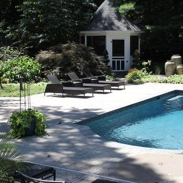 Pool & Backyard Renovation