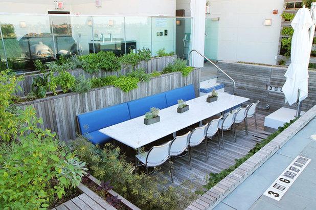 Modern Patio by Future Green Studio