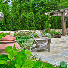 Traditional Patio by Liquidscapes