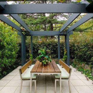 Patio   Small Contemporary Backyard Concrete Paver Patio Idea In Melbourne  With A Pergola