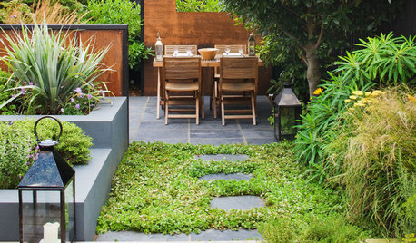 Can I Have a Lawn-free Garden That's Kind to the Environment?