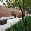 Garden Tour: Climbers, Trees and Terrace Space in a Petite London Plot